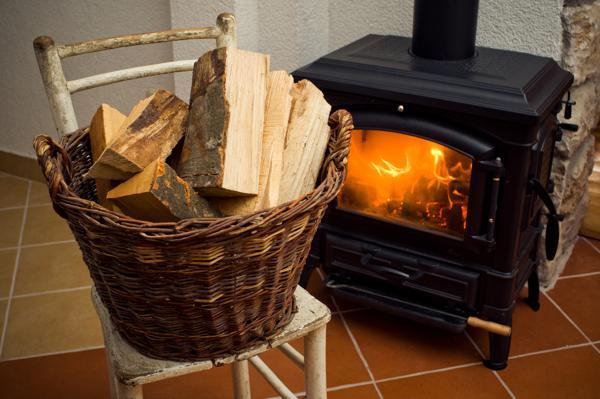 ¿Cuál es la estufa ideal para tu hogar?
